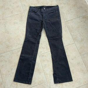 LOFT Modern Sexy Boot Corduroy Pants